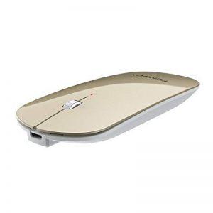 Mini souris Bluetooth FENIFOX, ultra fine, portable, avec batterie rechargeable pour PC, ordinateur portable, tablette Android de la marque FENIFOX image 0 produit